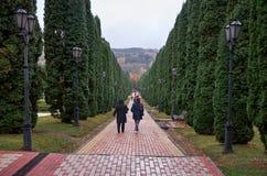 Ryssland Kislovodsk Dalen av rosor i Kislovodsken parkerar Royaltyfri Foto