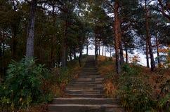 Ryssland Kislovodsk Semesterorten parkerar i Kislovodsk Royaltyfri Foto