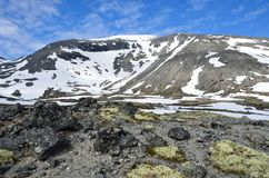 Ryssland Kola Peninsula, Khibiny berg i sommar arkivfoton