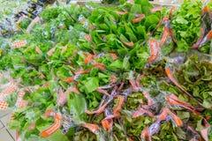 RYSSLAND MOSKVA, JUNI 11, 2017: Olika typer av grön sallad på hyllorna i supermarket Auchan Royaltyfria Bilder