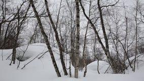 Ryssland republik av norr Ossetia, Alania Filmvintersnöstorm i bergen av det centrala Kaukasuset lager videofilmer
