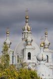 RYSSLAND St Petersburg - APRIL 2, 2007: Smolny domkyrka av Arkivfoto