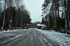 Ryssland Territorium av den reserv`-Kivach `en, November 17, 2017 Royaltyfri Foto