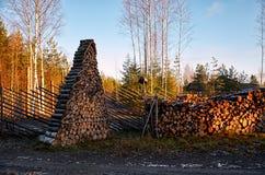 Ryssland Territorium av den Talvi Ukko för hundbarnkammare` `en, November 14, 2017 Royaltyfri Fotografi