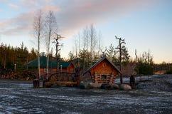 Ryssland Territorium av den Talvi Ukko för hundbarnkammare` `en, November 14, 2017 Royaltyfri Foto