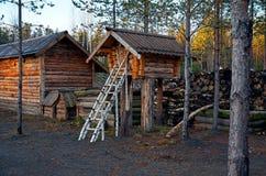 Ryssland Territorium av den Talvi Ukko för hundbarnkammare` `en, November 14, 2017 Arkivfoton