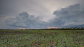 Ryssland timelapse Rörelsen av åskmolnen över fälten av vintervete i tidig vår i de vidsträckta stäpparna av gör arkivfilmer