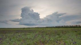 Ryssland timelapse Rörelsen av åskmolnen över fälten av vintervete i tidig vår i de vidsträckta stäpparna av gör stock video