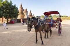 Rysujący kareciany i Birmański kierowca parkował czekanie dla turystów w Bagan obraz royalty free