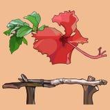 Rysujący odosobniony czerwony tropikalny kwiat i drewniany kija ogrodzenie ilustracja wektor