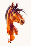 Rysunkowa głowa koń Obraz Royalty Free