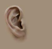 rysunkowa uszata istota ludzka ja ołówkowy Tło Zdjęcia Royalty Free