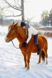 rysunkowej dziewczyny końskie jeździeckie serie vector zachodni dzikiego zdjęcia stock