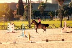 rysunkowej dziewczyny końskie jeździeckie serie vector zachodni dzikiego obrazy royalty free