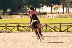 rysunkowej dziewczyny końskie jeździeckie serie vector zachodni dzikiego fotografia royalty free