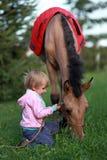 rysunkowej dziewczyny końskie jeździeckie serie vector zachodni dzikiego Zdjęcie Royalty Free