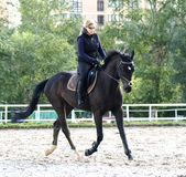 rysunkowej dziewczyny końskie jeździeckie serie vector zachodni dzikiego Zdjęcia Royalty Free