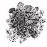 rysunkowej elementów wolnej ręki naturalny stylizowany Obrazy Stock