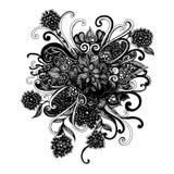rysunkowej elementów wolnej ręki naturalny stylizowany Obrazy Royalty Free