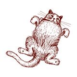 Rysunkowy wektor szczęśliwy kot Fotografia Stock