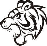 ryta tiger Arkivbild