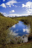 Ryton pools Royalty Free Stock Photo
