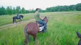 Ryttare på hästryggridningen till och med fältet på sommardagen stock video