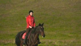 Ryttare som galopperar på ett grönt fält på hästrygg långsam rörelse stock video