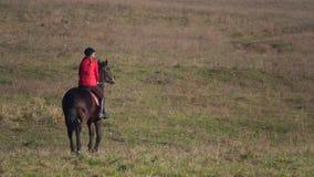 Ryttare som galopperar på ett grönt fält på hästrygg tillbaka sikt långsam rörelse stock video