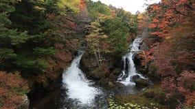Ryuzu Falls in autumn season at Nikko, Japan. stock video