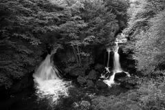 Ryuzu nedgångflöde till och med skog i höstsäsong av Japan royaltyfri foto