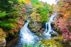 Ryuzu Spada w jesień sezonie przy Nikko, Japonia obraz royalty free