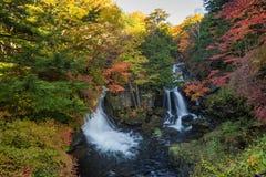 Ryuzu vattenfall i höst den mest favoriten för turist I arkivfoto