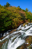 Ryuzu vattenfall i höst, i Nikko, Japan arkivbilder