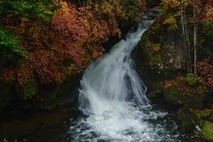 Ryuzu vattenfall med höst i Nikko Japan royaltyfri bild