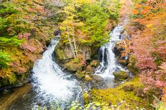Ryuzu waterfall in autumn at nikko tochigi japan stock photo