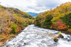 Ryuzu waterfall in autumn at nikko tochigi japan royalty free stock image