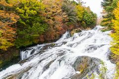 Ryuzu waterfall in autumn at nikko tochigi japan royalty free stock photography