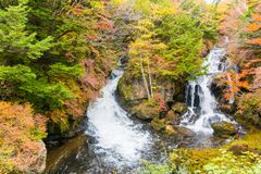 Ryuzu waterfall in autumn at nikko tochigi japan stock images