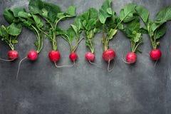 Rząd Świeże Surowe Organicznie Czerwone rzodkwie z Greenn liśćmi Układającymi w Górnej rząd granicie na zmroku betonu kamienia tl Obraz Royalty Free