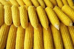Rząd czyrak kukurudza w rynku obrazy royalty free