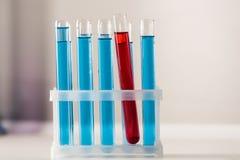 Rząd długie próbne tubki z jaskrawym błękitnym i czerwonym cieczem obraz stock