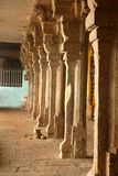 Rząd ornamentacyjni kamienni filary w malaikottai manicka vinayagar świątyni obraz stock