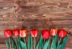 Rząd tulipany na drewnianym tle z przestrzenią dla twój wiadomości obrazy stock