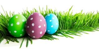 Rząd Wielkanocni jajka w trawie fotografia royalty free