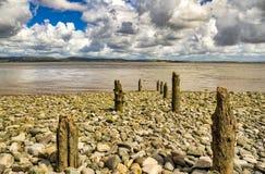 Rząd wygryzione drewniane poczty na żwirowatej plaży obraz stock
