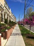 Rzędów domy w Brookland sąsiedztwie Waszyngton, d C Zdjęcia Stock