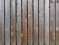 Rzędu brązu szalunku równo interliniować szorstkie deski używać jako uprawiają ogródek ogrodzenie fotografia royalty free