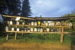 Rzędy i półki mieszkaniowe skrzynki pocztowa, wiejski ustawia Maui, Hawaje fotografia royalty free