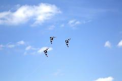 Rzędy latające kanie Obrazy Royalty Free